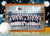 MCS Volleyball 2015